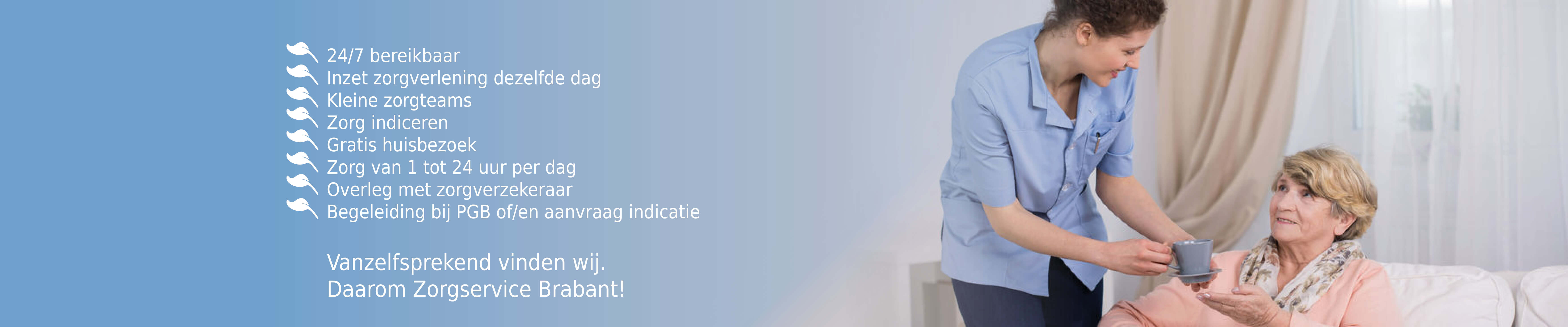Zorgservice Brabant website