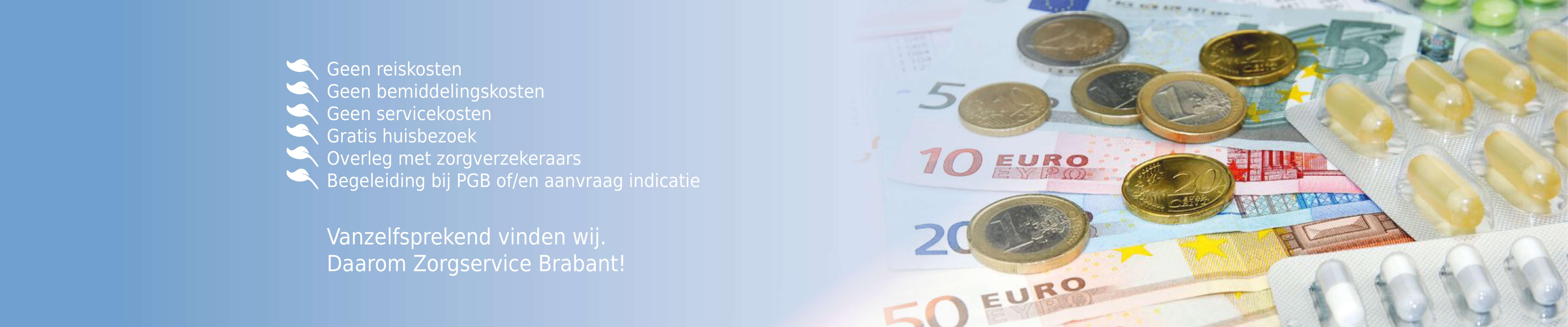 Zorgservice Brabant website verbeteringen